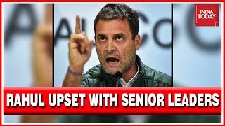 Rahul Gandhi Unhappy With Senior Leaders For Putting Interests Of Sons Before Party thumbnail