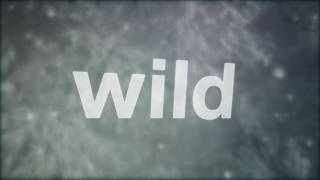 GLAY / Into the Wild (Lyric)