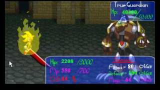 How to Beat the True Guardian in Final Fantasy Sonic X 5