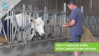iCownect, logiciel de gestion d'élevage bovin