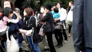 Hanami at Shinjuku Gyoen 2009 新宿御苑 thumbnail