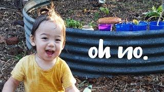 3 minutes of my toddler pranking me...