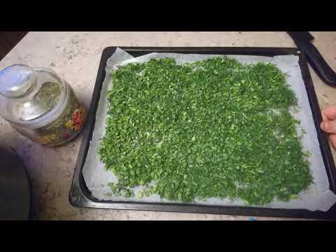 Как высушить зелень в духовке на зиму