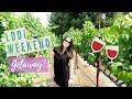 Lodi Wine Country Aug. 2017 - YouTube
