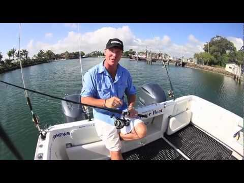 How To Use A Baitrunner - SHIMANO FISHING