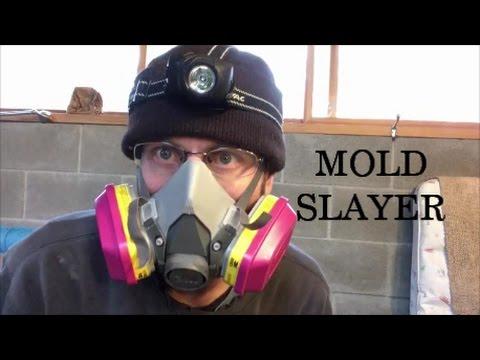 Killing Mold In The Pool Bathroom