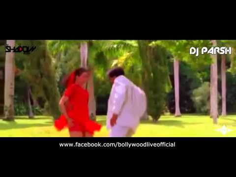 Duniya Mein Aaye Ho To Judwaa Dj Shadow Dubai & Dj Parsh Remix