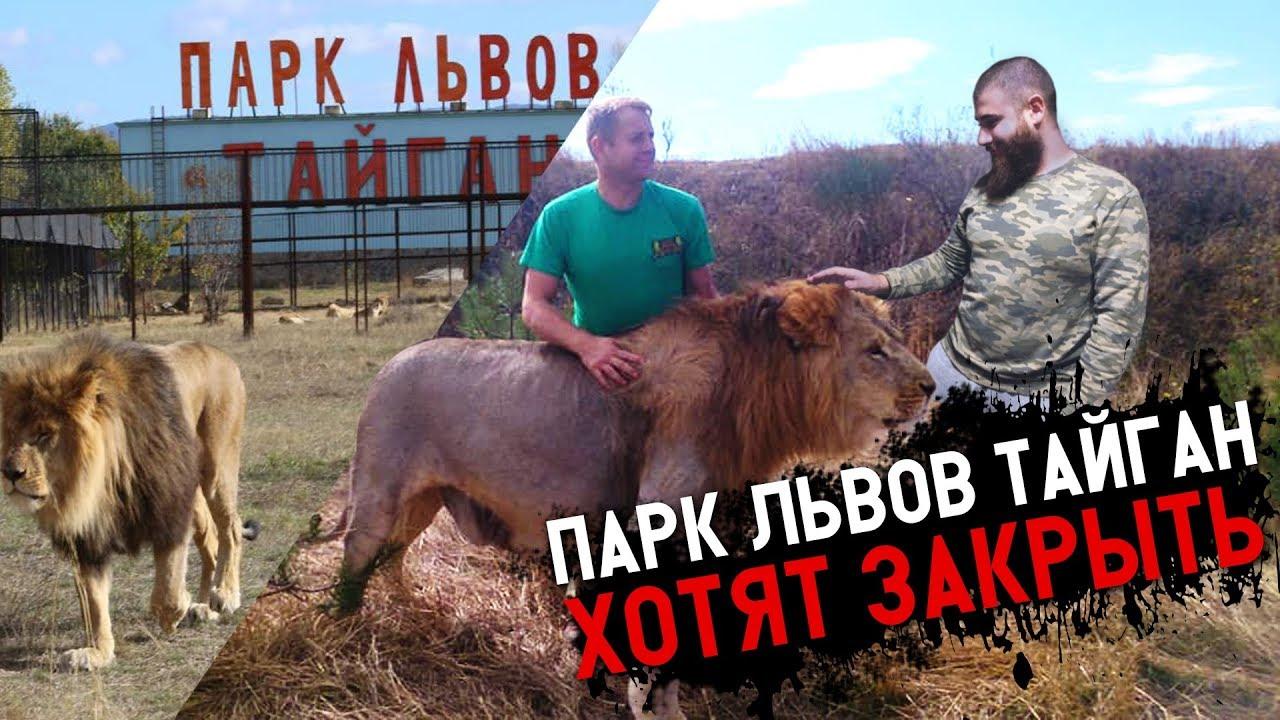 Парк Львов Тайган ХОТЯТ ЗАКРЫТЬ. Ложь СМИ !