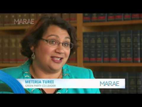 Politics - How politicians plan to win the Maori seats