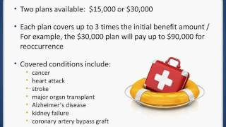 Alaska Employee Voluntary Supplemental Benefits