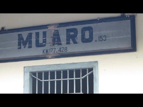 MENCARI EX-KAMP [STASIUN] MUARO di MUARO SIJUNJUNG   Titik Awal Muaro - Pekanbaru Death Railway