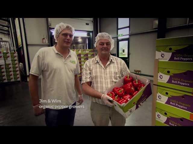 PuraNatura 100% USDA Organic Cultivation by 4Evergreen