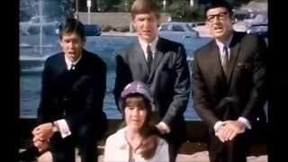 The Seekers - The Times they are a changin'  (Rare Stereo version)