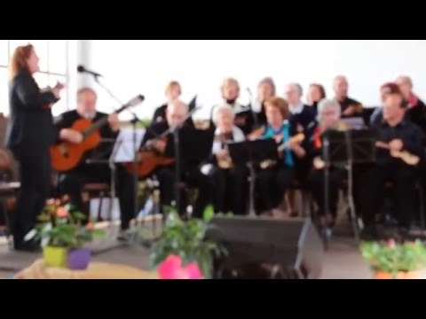 1º Encontro de Cavaquinhos - Corticeiro de Cima - 2º video