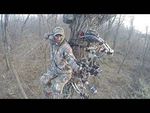 Bow Hunting Public Land in North Dakota (Big Buck Footage)