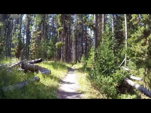 Pelican Valley Trail Yellowstone NP