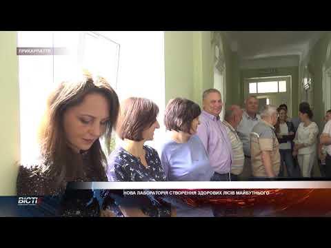 В Українському науково-дослідному інституті гірського лісівництва відкрили новітню лабораторію