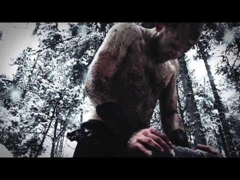 FINSTERFORST - Nichts als Asche (Short Edit) | Napalm Records