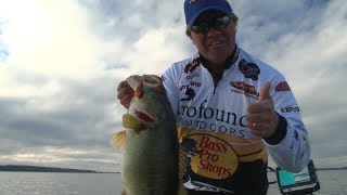 Heavy Z on the Grass Flats for Giant Bass