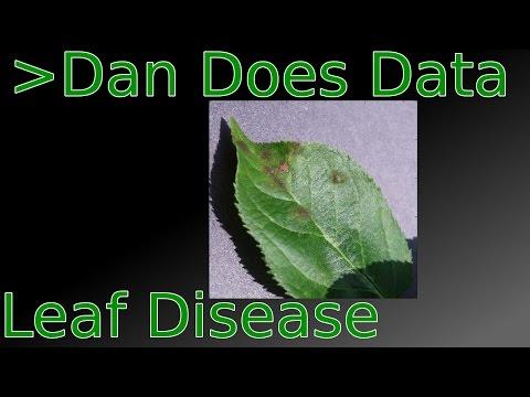 Repeat Plant Disease Recognition App by Nikos Petrellis