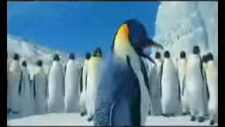 Download ooru vittu ooru vantha happy penguins tamil song MP3 song and Music Video