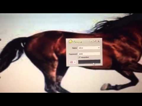 How to download Alicia Horse Game