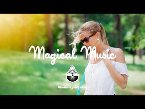 Tiesto & Don Diablo Feat. Thomas Troelsen - Chemicals (ShyKids Tropical House Remix)