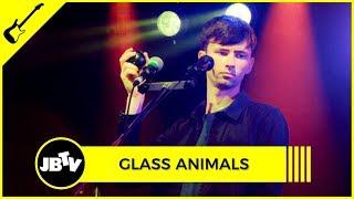 Glass Animals Pools Live JBTV