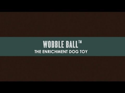Wobble Ball Interactive Dog Toy from P.L.A.Y. Pet Lifestyle and You
