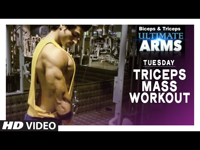Tuesday: TRICEPS MASS WORKOUT   Ultimate Arms   by Guru Mann