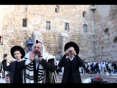 Shuvu - Eitan Katz