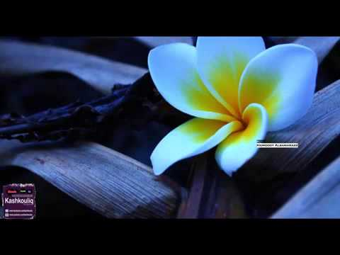 7d4f73a54 راشد الماجد - كثر كل شي واحشني (النسخة الأصلية) حصرياً - YouTube