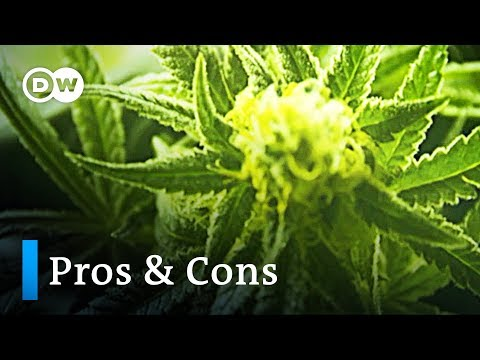 Cannabis: The pros and cons | DW Englisch