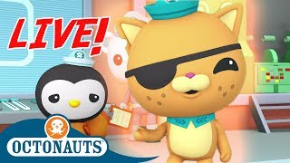 🔴 Live! - Octonauts | Wonderful Sea Creatures