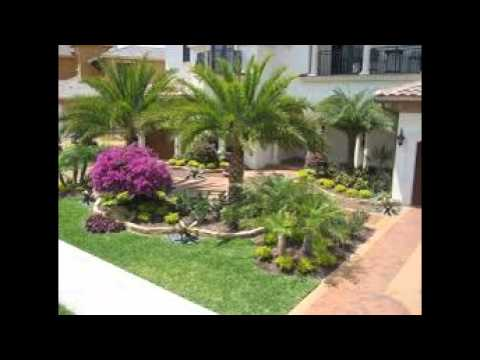 Florida Landscaping Ideas - Florida Landscaping Ideas - YouTube