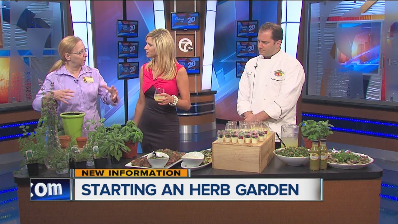 Tips for starting an herb garden and using herbs in your cooking