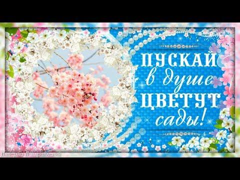 Пускай в душе цветут САДЫ и вдохновение проснется!