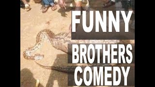 The Nigerian Snake That Swallow Money comedy