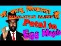 28.Tutorial on petal to egg magic by truth of magic,ummalathur rajeev.