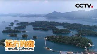 《远方的家》长江行(67) 九江的海河山 20191111 | CCTV中文国际
