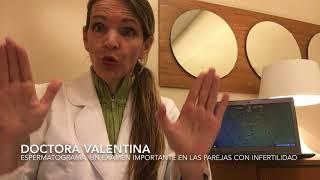 Espermatograma, Un Examen Importantísimo En Las Parejas Con Infertilidad