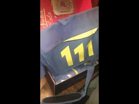 Fallout 4 Limited Edition Loot crate Unboxing Pt.1