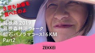 ほぼ登山だった。箱根路2019森林浴ウォーク Part2 長尾峠 編