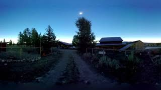 Solar Eclipse 2017 - Nature Reacts