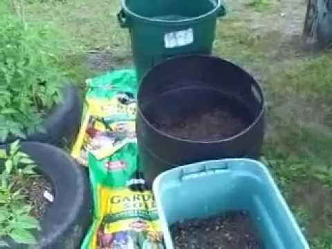 Image Result For How To Start A Potato Garden