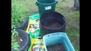Grow potatoes in container or trash / garbage can - 2012 gardening tutorial