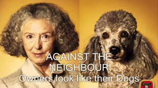 Against The Neighbour - Owners Look Like Their Dogs