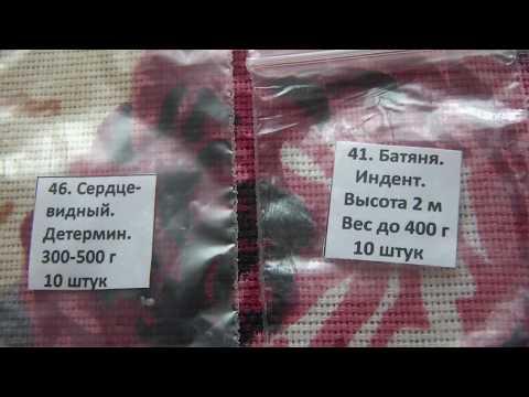 Семена томатов от Ольги Черновой на 2020 год