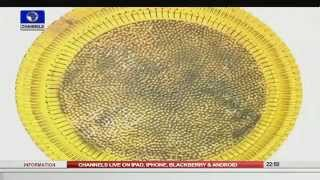 News@10: Kogi Police Command Arrests Rubbery Suspects 06/09/15 Pt 4