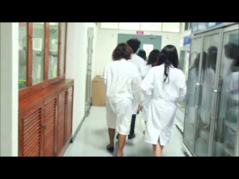 คณะเทคนิคการแพทย์ มหาวิทยาลัยรังสิต